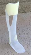floor reaction orthosis